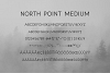 North Point | Sans Serif example image 9