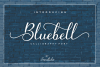Bluebell - Calligraphy Font example image 1
