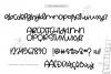 Bunny Ears - A Fun Handwritten Script Font example image 8