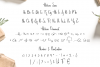 Hellena \ Font Duo with additional Ornament example image 7