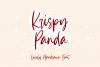 Krispy Panda - Lovely Handrawn Font example image 1
