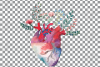 Flowering anatomical heart Valentine's day card design png. example image 2