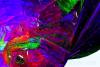 Crystal|Azbuka|Alphabet example image 15