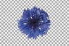 Cornflower watercolor clip art pack, bachelor's button example image 6