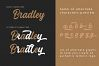 Bradley Typeface example image 7