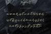 Magnolia A Stylish Calligraphy Font example image 13