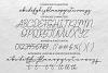 Angellita - Monoline Script Fonts example image 7