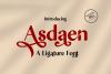Asdaen Ligature example image 1