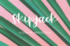 Bolabos Script Font example image 4