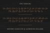 Bonfire - Brush Script example image 3