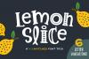 Lemon Slice Font Trio example image 1