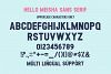 Hello Meisha a Modern Font Duo example image 10
