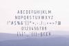 Bouffly Alice light Version l Elegant font sans serif example image 2