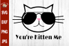You're Kitten Me Cat svg, funny cat Sunglasses svg cut file example image 1