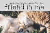 Cats and Dogs - A Cute Handwritten Font example image 3