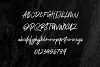 Polandic SVG Brush Font example image 9