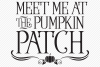 Pumpkin Patch SVG, Cut File, Fall Shirt Design, Thanksgiving example image 2