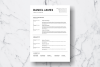 Resume Template Vol. 18 example image 2