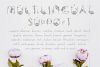 Amelie Floral Display Font example image 7