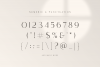 Saudagar Display Font & 7 Bonus Logo example image 14