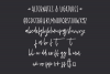 Shoelace Scrawl, a handwriting font example image 3