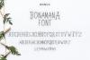 Manhatoone Script, 3 font example image 8