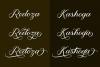 Meighan Script example image 6