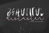 Beautiful Disaster OTF & SVG Font example image 1