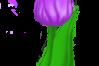 Tulip Bouquet example image 4