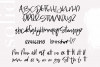 Washington - A Handwritten SVG Script Font example image 20