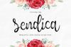 Sendica example image 1