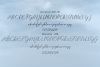 Selvia Font Duo example image 6