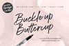 Buckle up Buttercup Marker Font example image 1