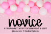 Novice - A Handwritten Script Font example image 1