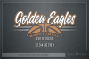Golden Eagles, Basketball, Sport, Design, PRINT, CUT, DESIGN example image 5