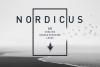 Nordicus. 60 Creative Logos example image 1