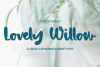 Lovely Willow - A Hand-Lettered Script Font example image 1