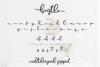 Bristle - Beautiful Font Script example image 4
