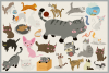 80 Cute Cat Vector Clipart & Seamless Patterns example image 3