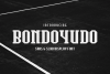 Bondoyudo Pro Display example image 1