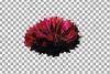 Cornflower watercolor clip art pack, bachelor's button example image 4