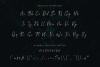 Monatta - Luxury Signature Font example image 7