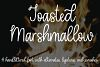 Toasted Marshmallow - A handlettered script font example image 1