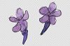 Bouquet summer breeze lavender watercolor png example image 3