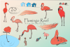 Flamingo Reef- Cute Flamingo's Clipart example image 1