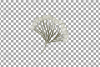 Cotton bolls and fir branch leafy autumn and winter decor example image 17