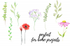 Watercolor Illustration With Field Flowers, Vintage Wedding example image 2