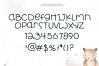Little Bear - A Fun Handwritten Font example image 6