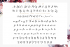 Alyanda Script example image 11