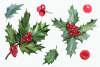 Watercolor Holly Clip Art Set example image 3